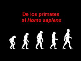 Monos NM
