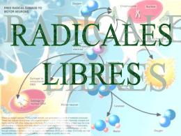 Radicales Libres - alumnosmedicinaunahvs