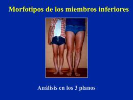 15- Morfotipos de los miembros inferiores - lerat