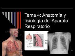 Tema 4: Anatomía y fisiología del Aparato Respiratorio