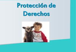 Servicios de Protección de Derechos