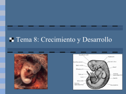 Presentación diapositivas desarrollo embrionario