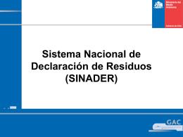 Informe de Avance Nº1 Sistema Nacional de Declaración de