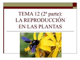 TEMA 13: LA REPRODUCCIÓN EN LAS PLANTAS