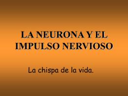 LA NEURONA Y EL IMPULSO NERVIOSO