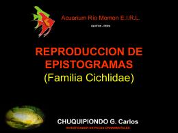 REPRODUCCION DE PECES (Familia Cichlidae)