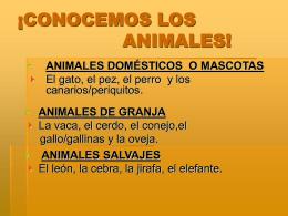 LOS ANIMALES Y EL LUGAR DONDE VIVEN.