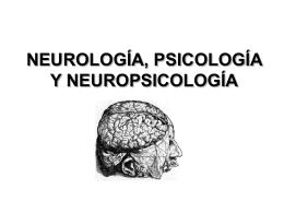 NEUROPSICOLOGIA_3_