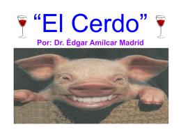 El_Cerdo - Radio Verdad