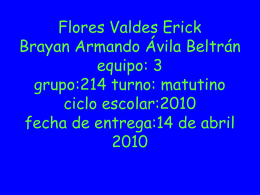 Flores Valdes Erick BRAYAN