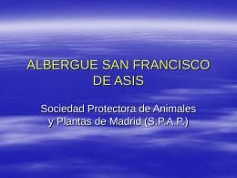 1 + 1 - Sociedad Protectora de Animales y Plantas de Madrid