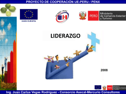 Ing. Juan Carlos Vegas Rodriguez - Consorcio Asecal