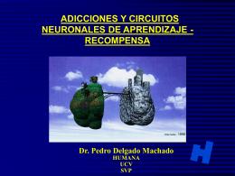 HD 2 Adicciones y Circuitos de Aprendizaje P. Delgado