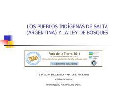 CEPIHA - CIUNSA_PUEBLOS INDÍGENAS Y LEY DE