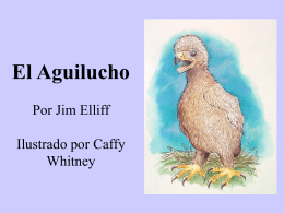 El Aguilucho - Christian Communicators Worldwide