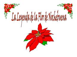 La Leyenda de la Flor de Nochebuena