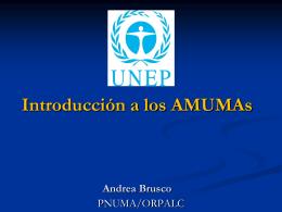 1992 - Rio de Janeiro Conferencia de las Naciones Unidas sobre el