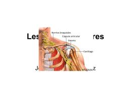 Lesiones articulares del hombro ppt