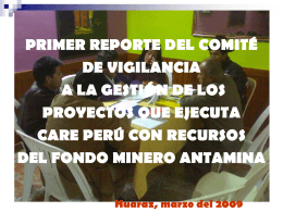 Primer reporte del comité de vigilancia