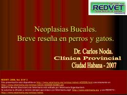 Diagnóstico de las enfermedades Neoplásicas en