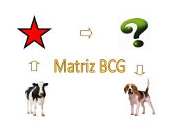 MATRIZ BCG.