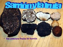 Que hongo hace famosa la localidad de sarrión ?