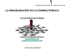 Carlos Luis Ireijo Mitsuta