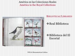 América en las Colecciones Reales
