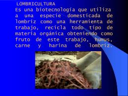 Lombricultura - Proyecto de Energía Renovable