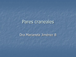 Pares craneales - WordPress.com