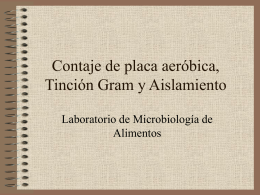 Contaje de placa aeróbica, Tinción Gram y Aislamiento