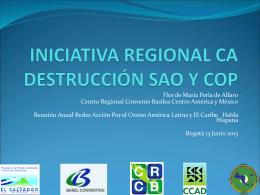 INICIATIVA REGIONAL CA DESTRUCCIÓN SAO Y COP
