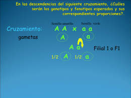 AABB - Educa Santiago
