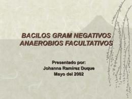 BACILOS GRAM NEGATIVOS ANAEROBIOS FACULTATIVOS