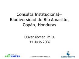 Consulta Institucional—Biodiversidad de Río Amarillo, Copán