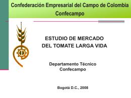 ESTUDIO DE MERCADO DEL TOMATE LARGA