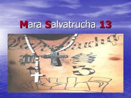 Mara Salvatrucha 13