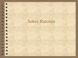 Sobre Ratones