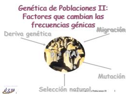 Tema 21: Genética Poblaciones II