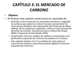 capítulo 3: el mercado de carbono
