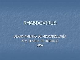 Presentacion1rabia