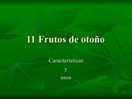 11 Frutos de otoño - CRA Valle de Valverde