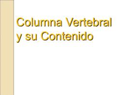 5. Columna Vertebral y su Contenido