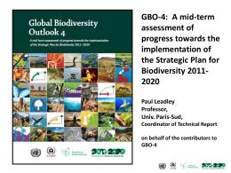GBO-4 presentation