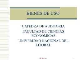 BIENES DE USO - Facultad de Ciencias Económicas