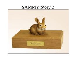 SAMMY Story 2