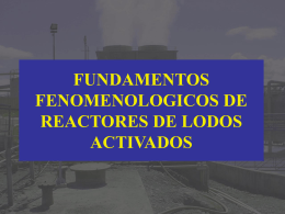 Fundamentos Fenomenológicos de Reactores de Lodos Activados