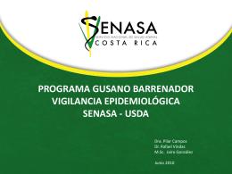 programa gusano barrenador vigilancia epidemiológica senasa