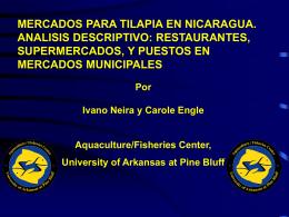 mercados para tilapia en nicaragua. analisis