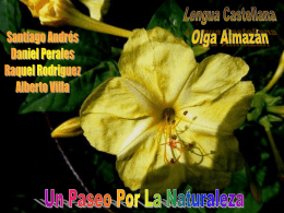 Romance del Duero - Lengua catellana y Literatura 2º ESO B